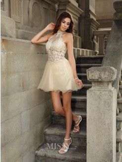 A-Line/Princess Sleeveless High Neck Tulle Short/Mini Ruffles Dresses
