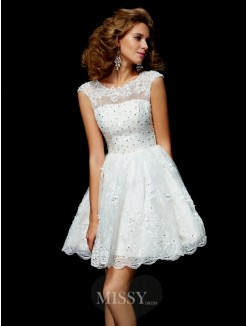 A-Line Short Sleeves Applique Organza V-neck Mini Dress