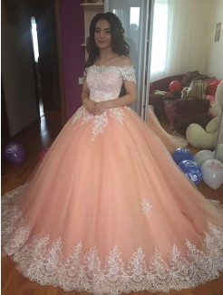 Ball Gown Sleeveless Tulle Off-the-Shoulder Court Train Lace Dresses